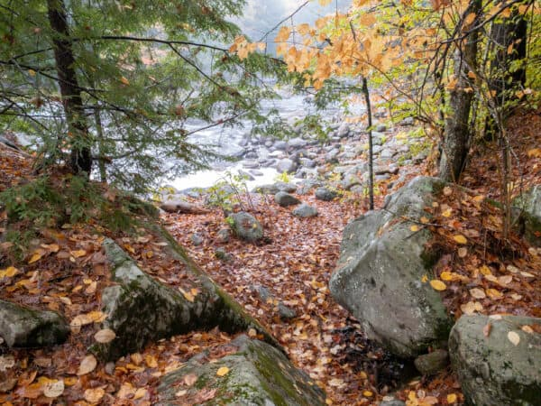 Trail to Dunkley Falls in the Adirondacks