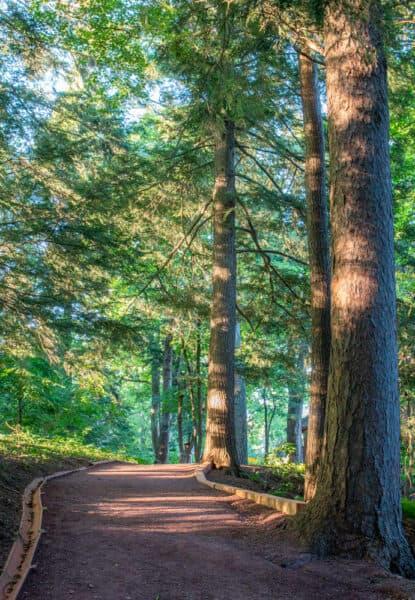 Path through Root Glen at Hamilton College in Oneida County New York