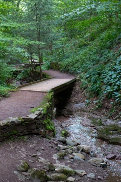 Stream and bridges in Root Glen on the campus of Hamilton College