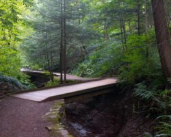 Hiking at Root Glen at Hamilton College in Oneida County