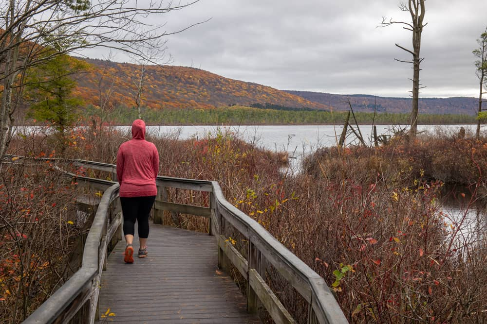 Woman hiking on the boardwalk in the Labrador Hollow Unique Area in New York