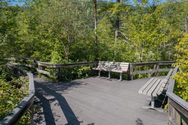Trail split on the boardwalk at Labrador Hollow near Syracuse NY