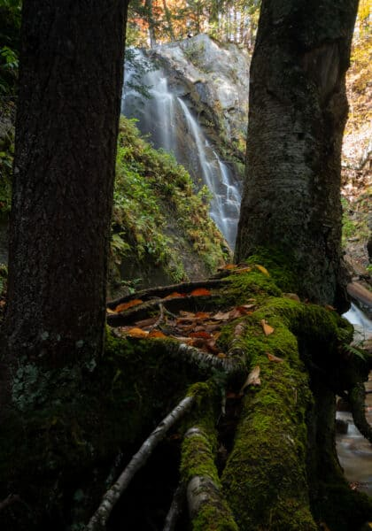 Trees surround Stag Brook Falls at Whiteface Mountain Ski Resort