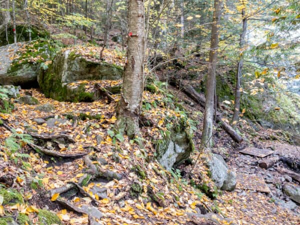Side trail to the base of Stag Brook Falls near Lake Placid New York