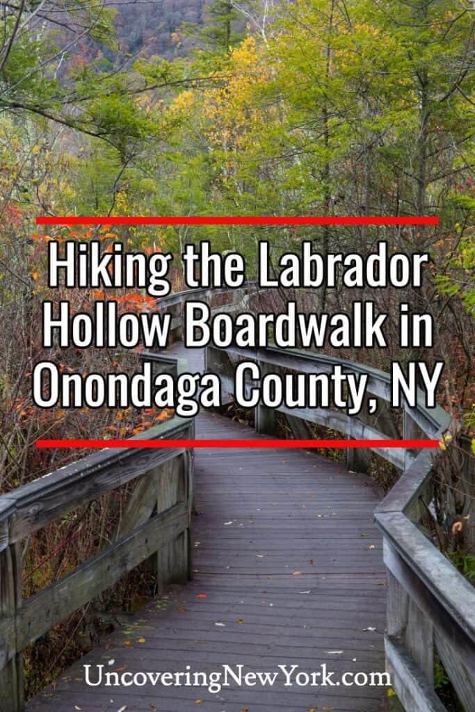Boardwalk in the Labrador Hollow Unique Area