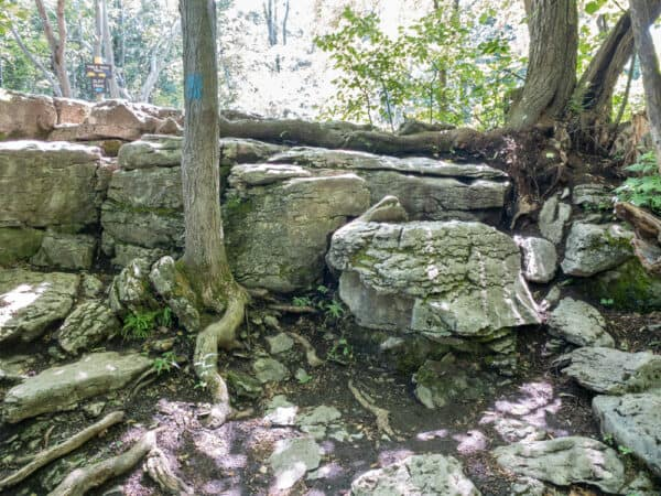Rock steps on the Cliff Trail at Clark Reservation State Park near Syracuse New York