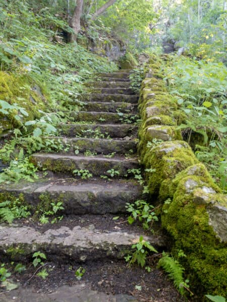 Steps on the Lake Trail in Clark Reservation State Park near Syracuse NY