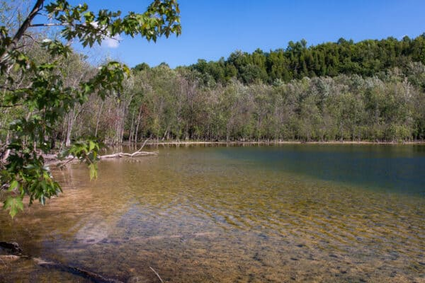 Close look at Glacier Lake in Clark Reservation State Park in Onondaga County NY