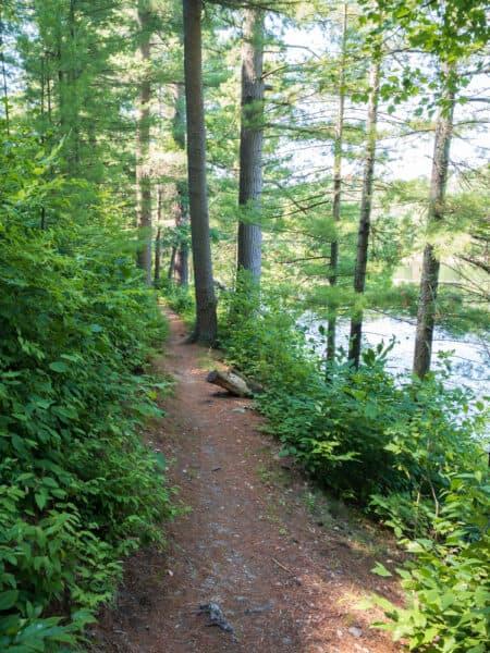 Lily Lake Trail near Binghamton New York