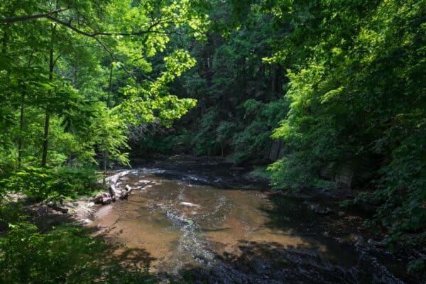 Allen Creek in Corbett's Glen near Rochester NY
