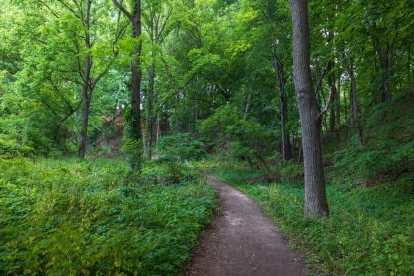 Perimeter Trail in Corbett's Glen near Rochester New York