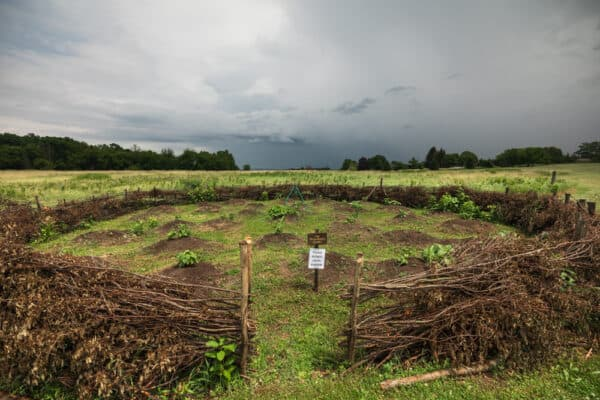Garden plot at Ganondagan State Historic Site in Victor New York