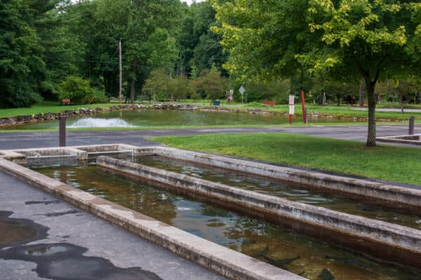 Fish tanks and a pond at the Powder Mills Hatchery near Rochester New York