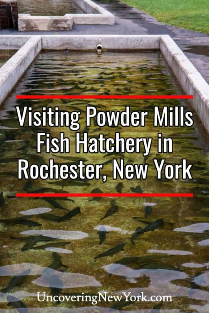 Powder Mills Fish Hatchery in Rochester New York