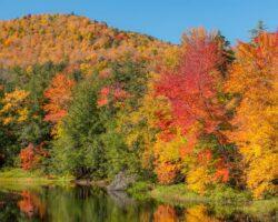 11 Beautiful Roadside Spots to See Fall Foliage in the Adirondacks