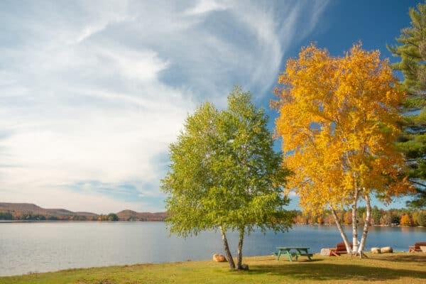 Fall foliage in the Adirondacks next to Lake Pleasant