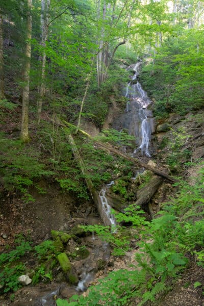 Waterfall at the Robert Woodruff Outdoor Learning Center in Van Hornesville NY