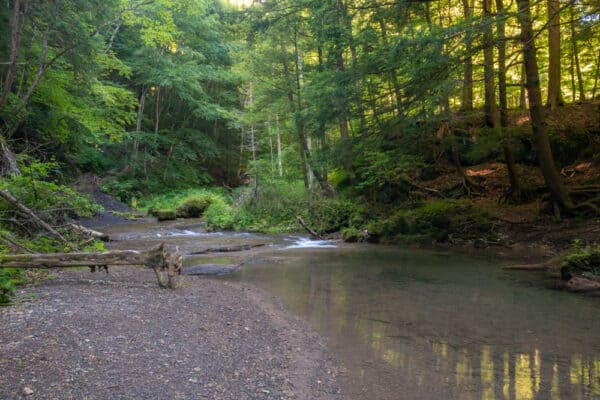 The end of the trail along the Otsquago Creek in Montgomery County New York