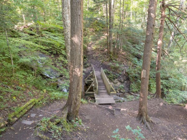 Wooden bridge on the Owen D Young Nature Trail in Montgomery County NY